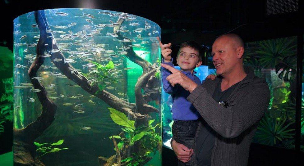 Festa del Papà al Gardaland Sea Life Aquarium