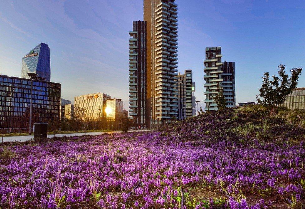 Fondazione Riccardo Catella lancia un concorso sull'architettura sostenibile e presenta il programma culturale 2021 di BAM