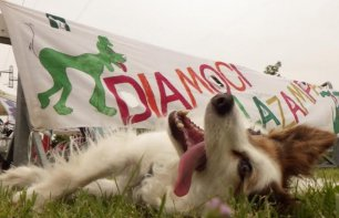 Raduno Cani Simpatia al Parco Forlanini