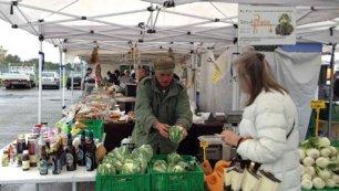 Terra di prato mercato dei produttori a prato for Mercato prato