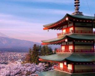 La Festa del Giappone al Magnolia