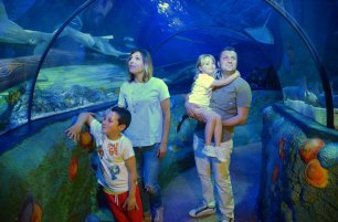 Gardaland Sea Life Aquarium festeggia i 10 anni con una caccia al tesoro