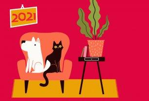 Milano for Pets: torna la Milano Pet Week