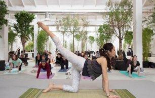 Lezioni di yoga da Tenoha Milano