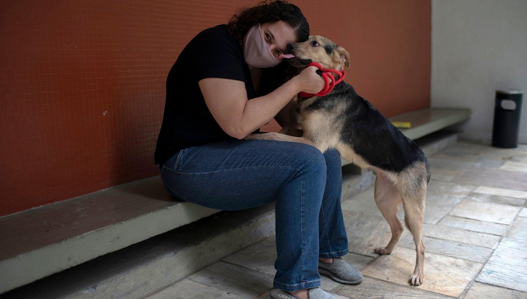 Cani Gatti E Altri Pet Un Antidoto Alla Solitudine Del Lockdown La Repubblica