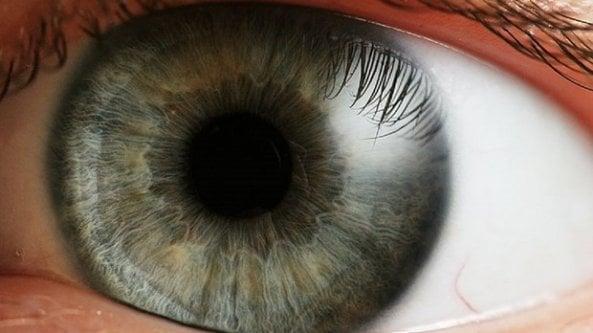 Distrofie retiniche ereditarie: cinque cose da sapere