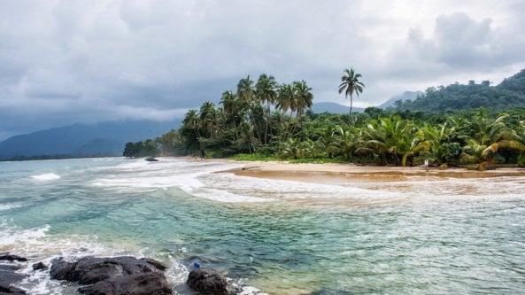 La Sierra Leone ha venduto le sue foreste alla Cina per un mega-porto