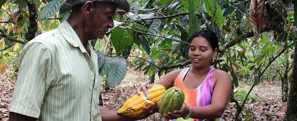Dal 2020 un mondo senza cacao