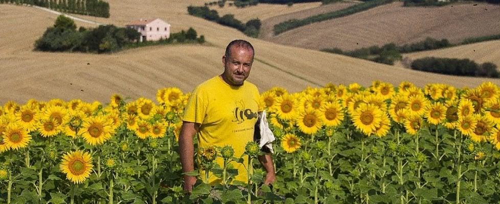 I pastori di api che salvano i raccolti