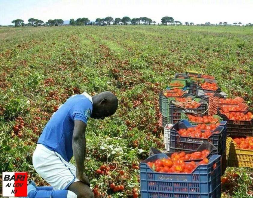 Balotelli nei campi di pomodoro,Fb insorge per il fotomontaggio razzista