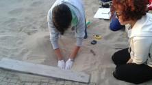 Vana la lotta dei volontari, le tartarughe non nasceranno -  Foto