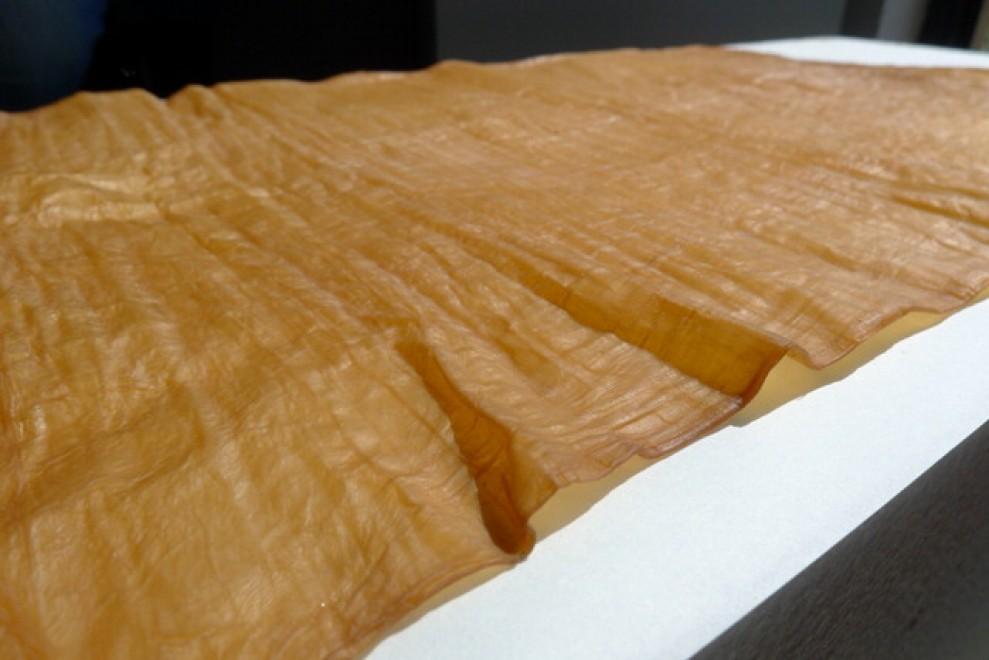 Acqua, batteri e scarti zuccherini: ecco la 'Green skin' made in Salento