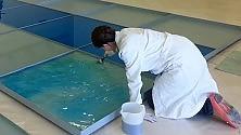 """Museo Pascali, si lavora  per sistemare  i """"32 mq di mare circa""""   di LORENZO MADARO"""