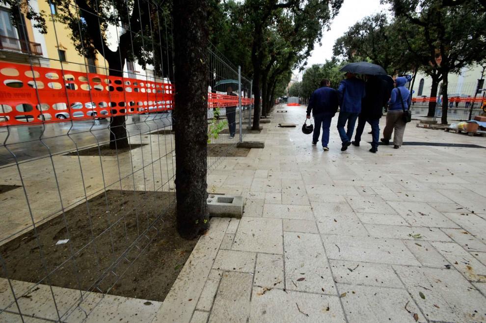 Bari, lo strabismo dei lavori pubblici: le aiuole 'pazze' sfiorano gli alberi, dentro di un soffio
