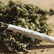 """""""Marijuana per il mal di schiena"""", scarcerato due volte: nuovo arresto"""