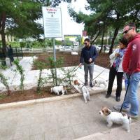 Cani a spasso da soli, a Bari apre l'area di sguinzagliamento