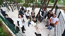 Cani a spasso da soli a Bari apre l'area  di sguinzagliamento