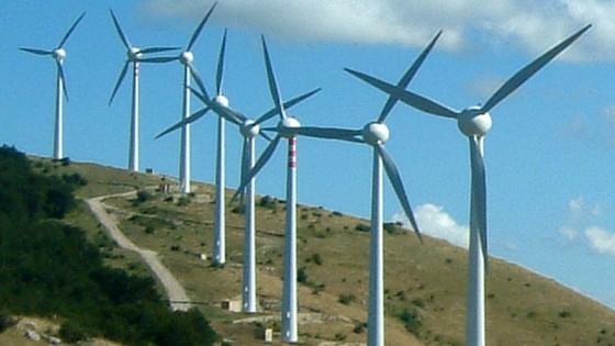Pale eoliche nelle gravine degli uccelli, scattano i sigilli: 12 indagati per truffa sui contributi per l'energia