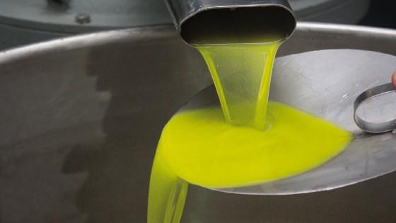 Maxi truffa sull'olio made in Italy: fatture false per 10 milioni di euro, 8 indagati