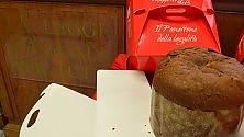 Ft  - Per Natale un dolce  al gusto della legalità con il panettone  dei dipendenti Gasperini