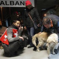Brindisi, il sopravvissuto e il suo cane: insieme salvati dal rogo della Norman Atlantic