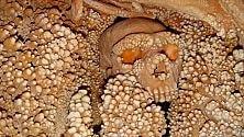 Dall'uomo di Altamura    il Dna più antico  per un Neanderthal