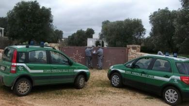 Diciotto ville ai margini dell'oasi Wwf  maxi sequestro a Torre Guaceto -   Foto
