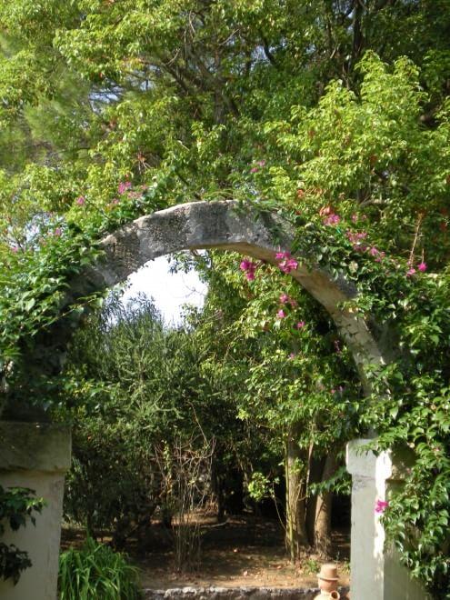 Salento il giardino delle meraviglie fra i pi belli d 39 italia 1 di 1 bari - Il giardino delle meraviglie ...