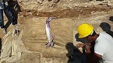 Una dea di 4 metri dove approdò Enea