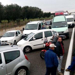 Xylella, gli agricoltori in rivolta contro il taglio degli ulivi bloccano la Brindisi-Lecce