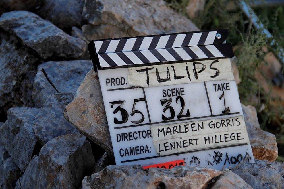 Marleen Gorris torna in Olanda, stop alle riprese di Tulips