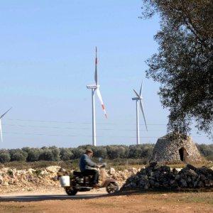 Brindisi, parco eolico Enel tra gli ulivi monumentali: tra  gli 11 indagati, ci sono anche quattro dirigenti regionali