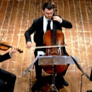 Agenda / La grande classica alla Vallisa, sul palco l'Accademia dei cameristi