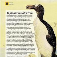 """""""L'antenato del pinguino viveva in Salento"""": così la Grotta Romanelli ha svelato la sua..."""
