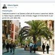 """Bari, il post di Sgarbi contro via Sparano senza palme:  """"Peggio di Punta Perotti"""""""