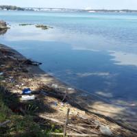 Ambiente, il record negativo di Taranto: 601 rifiuti di plastica sulla spiaggia