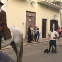 Bitonto, profughi nel corteo storico per ripulire lo sterco. E sui social è protesta:...