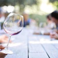 AGENDA/ La domenica di Cantine aperte, brindisi in 54 aziende vitivinicole