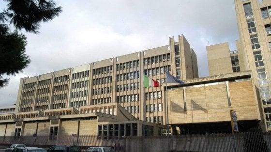 Lecce, emergenza pulci al tribunale: un'ala del palazzo chiude per disinfestazione