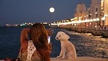 Plenilunio sul lungomare la grande bellezza di Bari