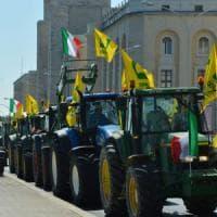 """Bari, la marcia dei trattori di Coldiretti blocca la città: """"Il nostro grano è sotto..."""