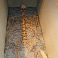 """Taranto, alla scoperta del MarTa: """"Il museo delle Olimpiadi dell'antichità"""""""