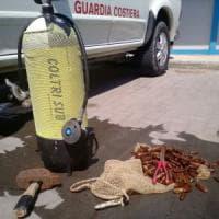 Bari, la Guardia costiera sequestra cinque chili di datteri: denunciato