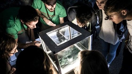 Puglia, la 'Notte dei ricercatori' anche a Bari e Lecce: musica, supercar e il bosone di Higgs