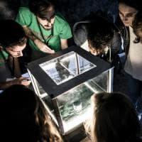 Puglia, la 'Notte dei ricercatori' anche a Bari e Lecce: musica, supercar