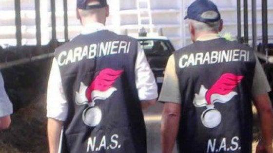 Procura di Brindisi :operazione Roller band.10 arresti.Video intervista