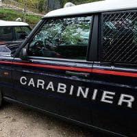Andria, rubano olive e speronano l'auto dei carabinieri per fuggire: cinque