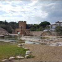 Cellino San Marco, ucciso un airone