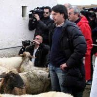 Taranto, si candida a sindaco Enzo Fornaro: l'ex pastore rovinato dalla diossina ora coltiva canapa