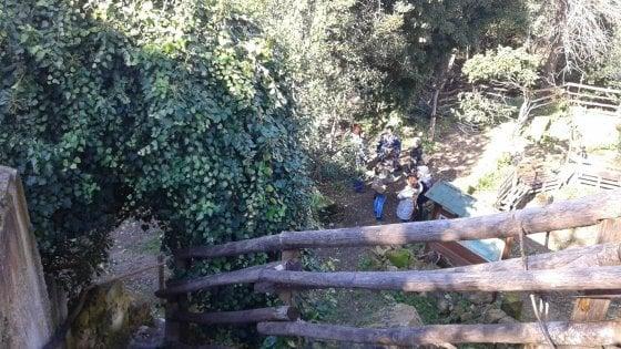 Lecce, c'è un giardino segreto sotto la città: è la foresta urbana salvata dai volontari